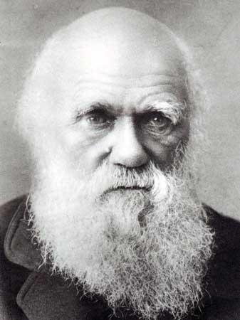 Resultado de imagem para darwin ch[